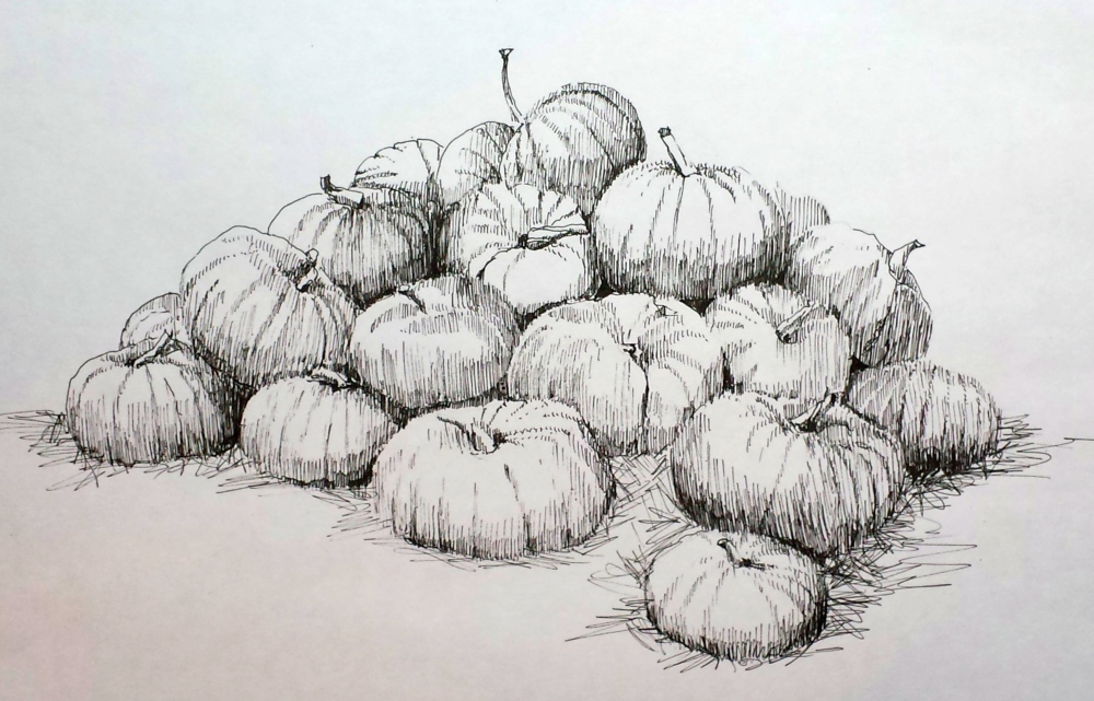 Drawing With No Lines : Pumpkins.jpg