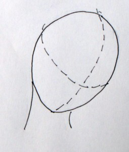 positionface4