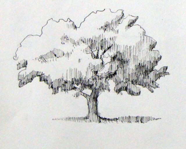 124tree1
