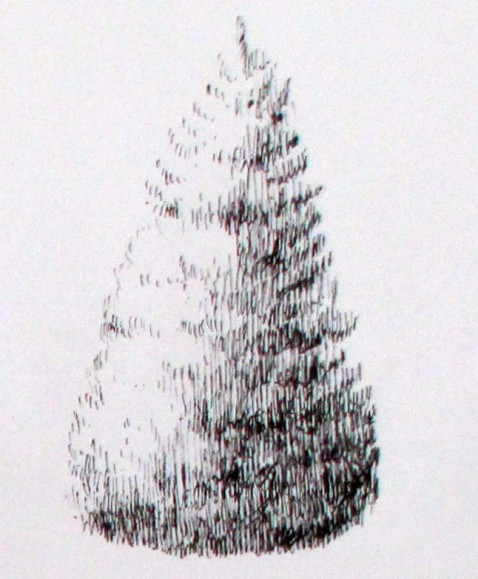 125spruce
