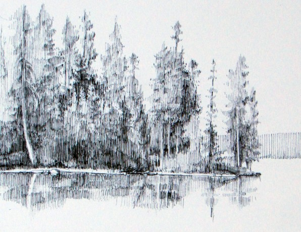 126forestdwg