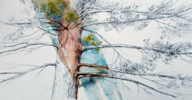 BranchingOut12x18